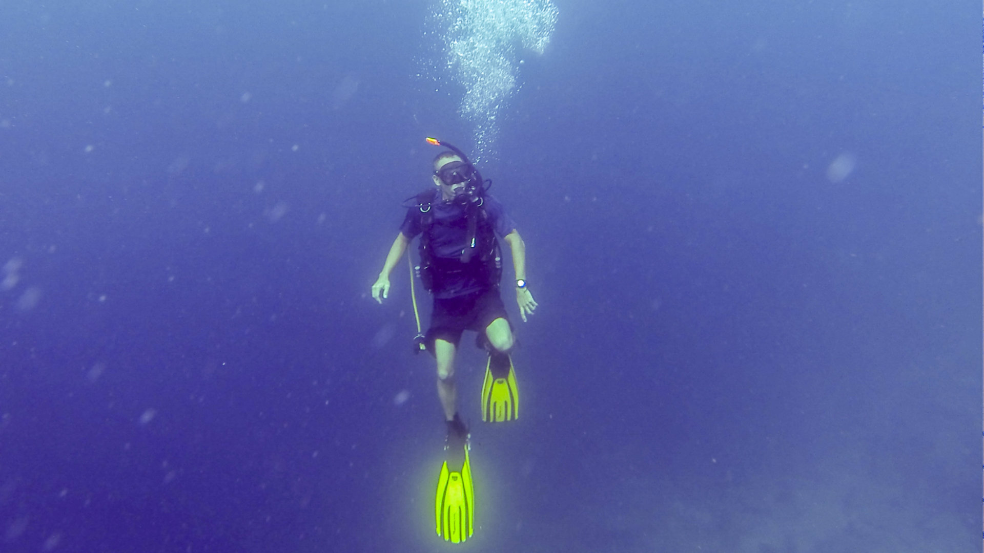Buceo 11