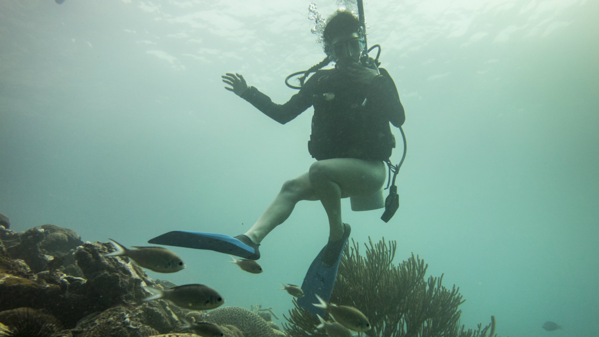 Buceo 7